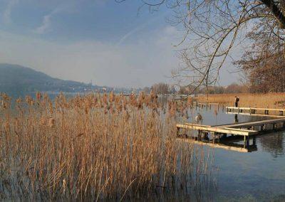 Ponton sur zone marécageuse du lac d'Annecy