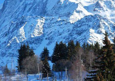 Le tramway du Mont Blanc descend au col de Voza