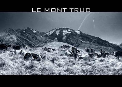 Les vaches du Mont Truc